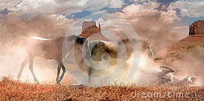 Wild horses in the dust