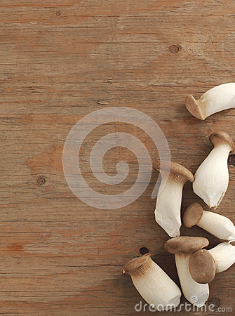 Wild mushroom