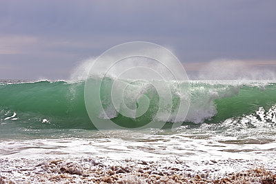 Wild Ocean wave