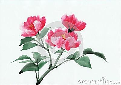 Wild red roses bush