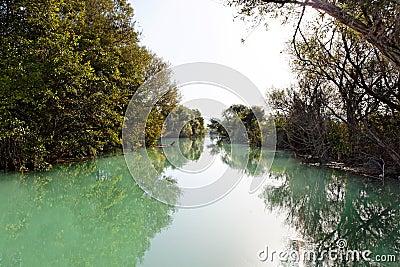 Wild river near Parga, Greece, Europe