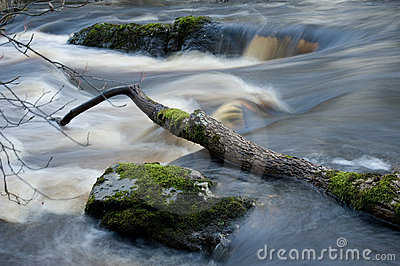 Wild River In Sweden