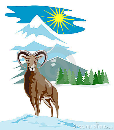 Free Wild Sheep With Mountain Stock Images - 4386154