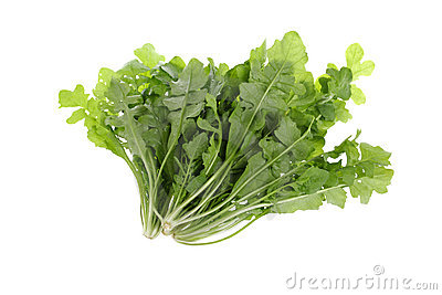 Wild vegetable