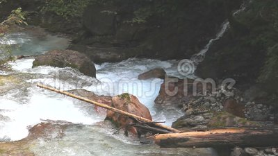 Wild water in a gorge stock footage