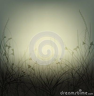 Wild weeds