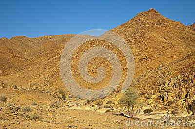 Wild woestijn-als landschap in Richtersveld