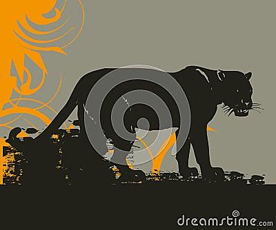 Wildcat grunge illustration