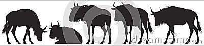 Wildebeest, gnu antelope vector silhouettes