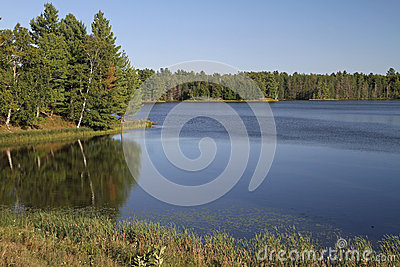 Wilderness Lake in Bright Sunshine