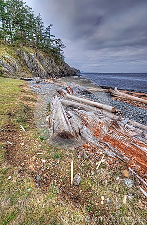 Wilderness shoreline