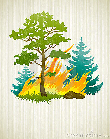 Wildfire disaster with burning forest trees