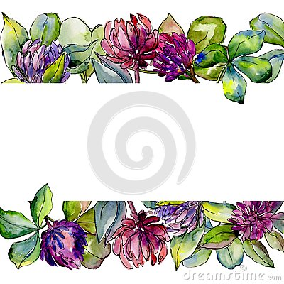 Free Wildflower Clover Flower In A Watercolor Style Frame. Stock Photos - 115613523