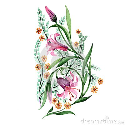 Free Wildflower Ornament Flower In A Watercolor Style Isolated. Stock Images - 109714594