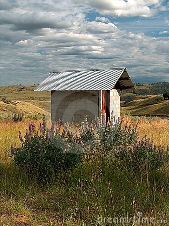 Wildflower Outhouse