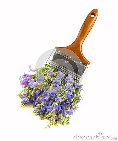 Wildflower paintbrush