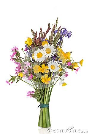 Wildflower Posy Royalty Free Stock Photo Image 17028465