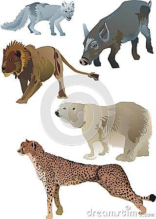Free Wildlife Animals Royalty Free Stock Image - 2758906