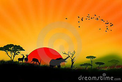 Wildlife of colorful africa landscape illustration