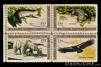Wildlife conservation Postal Stamp