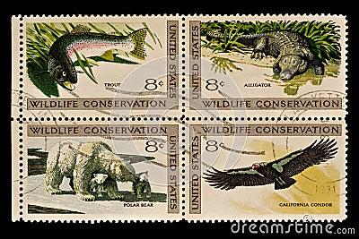 Wildlife conservation Postal Stamp