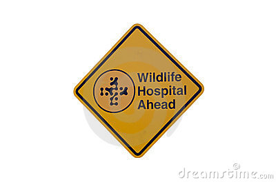 Wildlife hospital sign