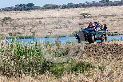 Wildlife Ranger Vehicle Tourists Editorial Image