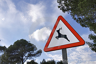 Wildlife signal