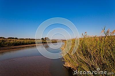 Landscape River Colors Vegetation