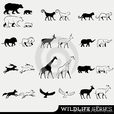 Wildlife Vector Series