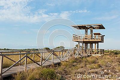 Wildlife watchtower