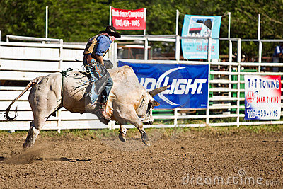 Willits Frontier Days Rodeo Editorial Stock Photo