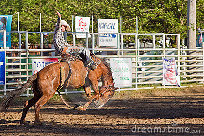 Willits Frontier Days Rodeo Editorial Image