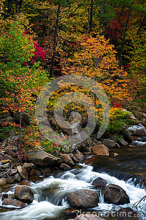 Free Wilson Creek Autumn 10 Royalty Free Stock Photography - 45891707