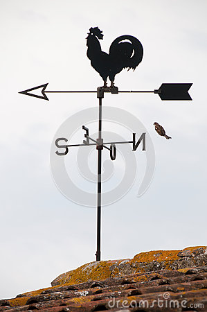 Free Wind Cock Weather Vane Direction Royalty Free Stock Photos - 29531388