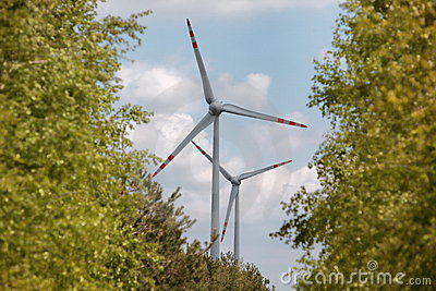 Wind energy turbines among trees