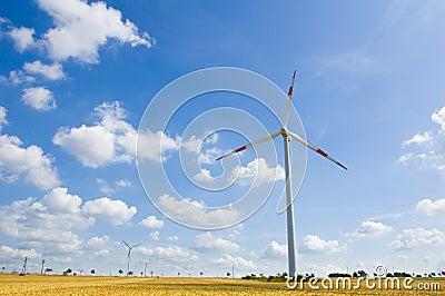 Wind farm 14