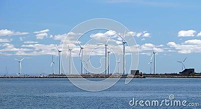 Wind farm w4
