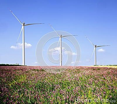 Wind farms .