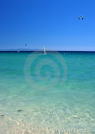 Wind and kite surfers in clear sea with blue sky.