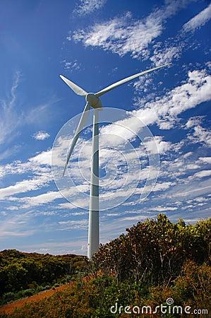 Wind Mill 2