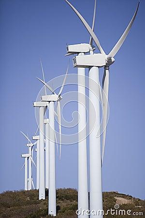 Wind mill clean power