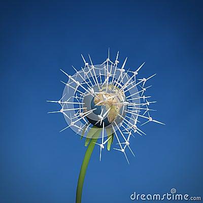 Wind turbine Earth flower
