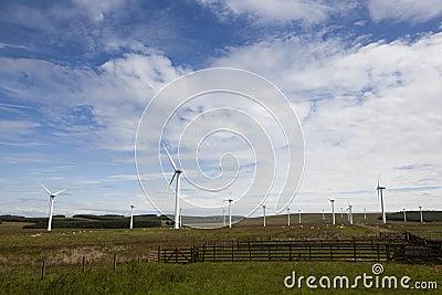 Wind turbine farm.