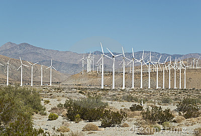 Wind turbine farm in Southern California