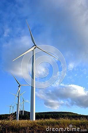 Wind Turbine Farm with Windmill Turbines