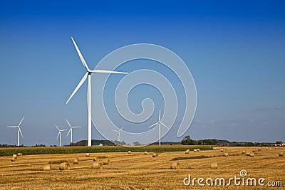 Wind Turbine on the farmer field