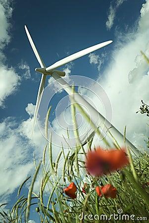 Free Wind Turbine In A Poppy Field Stock Images - 5855314