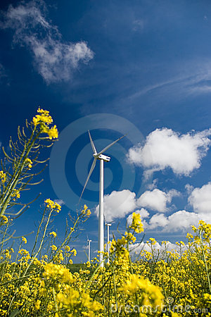 Free Wind Turbine, Yellow Field. Royalty Free Stock Photos - 2445568