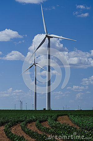 Wind turbines in countryside